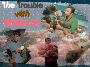 Tribble-Wallpaper-star-trek-3767752-800-600
